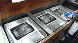 Clearing the Platinum Print